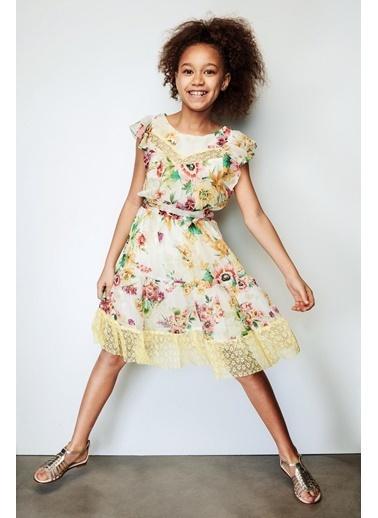 Lia Lea Lia Lea Kız Çocuk Çiçekli Elbise 19SSLL01623 Renkli
